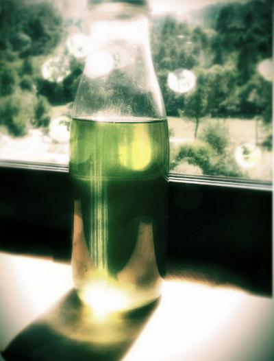 absinthe-liqueur-des-esprits