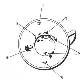 """(1) Ancre, (2) Hache, (3) Coeur, (4) Palmier, (5) Triangles, (6) La lettre """"L""""."""